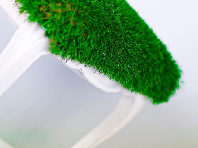 Testa Verde